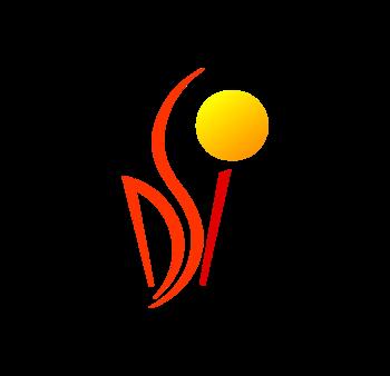 DS Instytut
