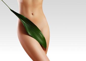 JADORE INSTYTUT - depilacja laser bikini podstawowe kobiety / classic bikini