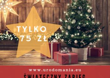 Studio Kosmetyczne URODOMANIA - zabieg świąteczny - kawitacja+ampułka+maska