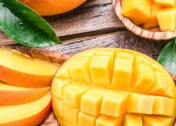 SPA & NATURE JUSTYNA BIELENDA RESORT BINKOWSKI - pobudzające mango