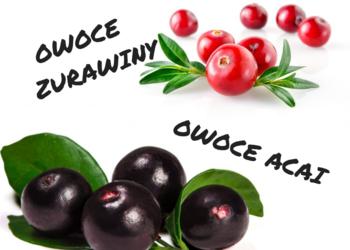 Mobilny Gabinet Terapii Manualnej Helena Osowiec-Bujna - masaż peelingujący acai/cranberry