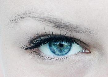 Yasumi Polkowice - tento - młode spojrzenie (oczy)