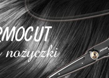 Thermocutt