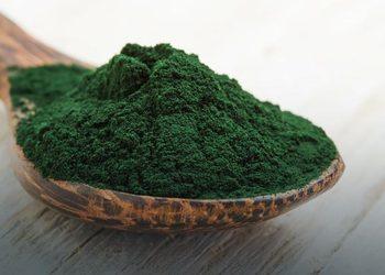 Chillout. Gabinet masażu i pielęgnacji ciała Dominika Ośródka  - goodbye cellulit 5 x alga, 5x sauna infrared