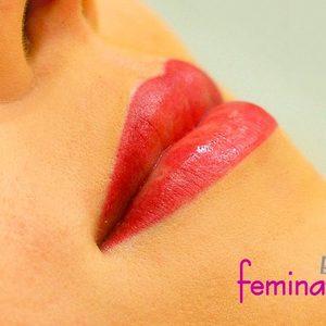 Makijaż Permanentny Usta Kontur Z Cieniowaniem Oferta