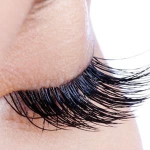 Eyelashbrow