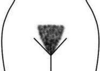 Gabinet Zdrowy Styl - depilacja bikini płytkie (k.17)