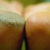 Pedicure callus peel poznan