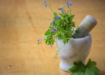 Galatea Beauty Power - peeling medex twarz + zioła