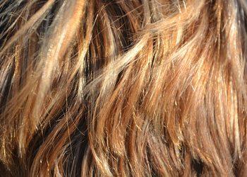 Hair418265 1280